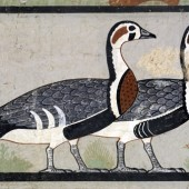 The Meidum Geese Are Not A Fake – Part 2