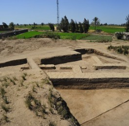 Discoveries made at Tell El-Farkha by the Polish Mission
